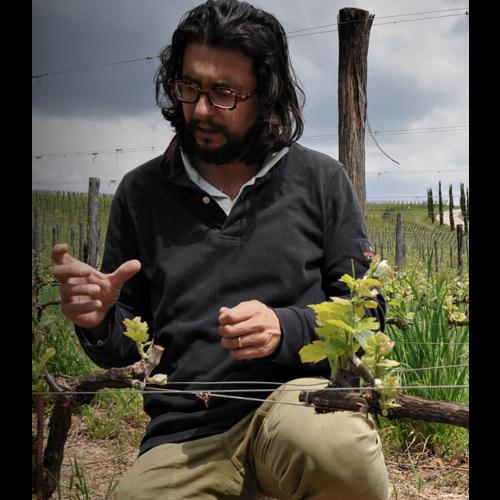 Stefano Amerighi Syrah 2017 - Magnum 1,5L
