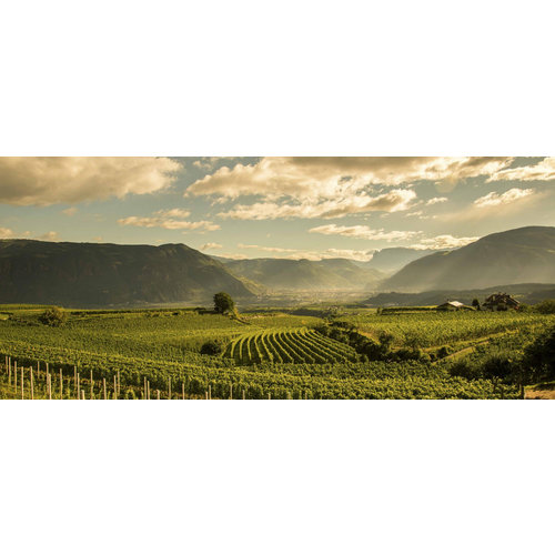 St. Michael Eppan Chardonnay Sanct Valentin 2019 - Magnum 1,5L