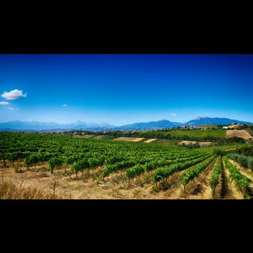 Velenosi Rosso Piceno Superiore 2017