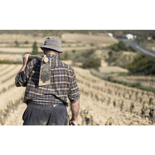 Lopez de Haro Rioja Crianza 2017 - Half 0,375L