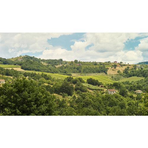 Villa Raiano Bosco Satrano Fiano di Avellino 2017