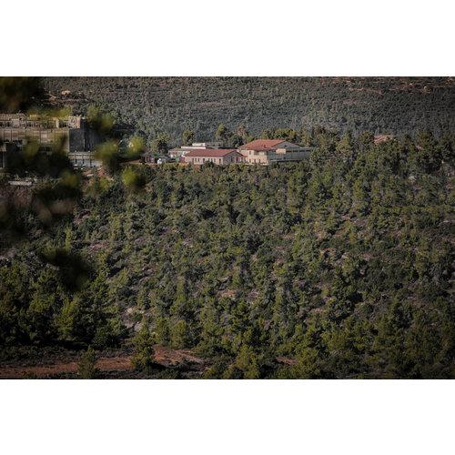 Domaine du Castel RAZI'EL 2018