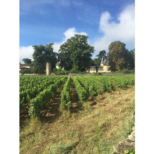 Chateau Dudon Sauternes 2016 - Half 0,375L
