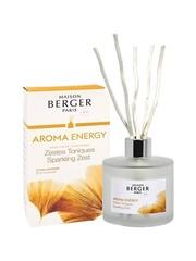 Maison Berger Paris Maison Berger Geurstokjes Aroma Energy