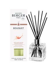 Maison Berger Paris Maison Berger Geurstokjes Pétillance Exquise