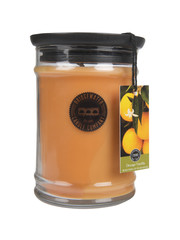 Bridgewater Candle Company Bridgewater Geurkaars Jar Large Orange Vanilla