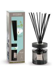Esteban Esteban Orchidee Blanche Geurstokjes Ellipse met 150ml navulling