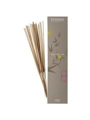 Esteban Esteban Esprit de The Bamboo sticks