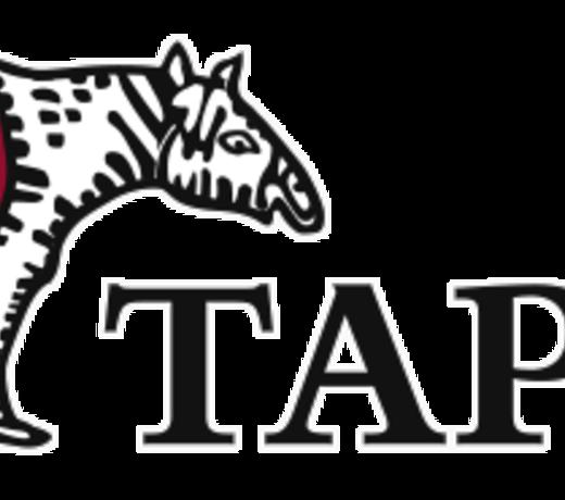 Tapir Wachswaren