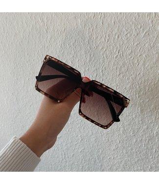 Yara  zonnebril bruin