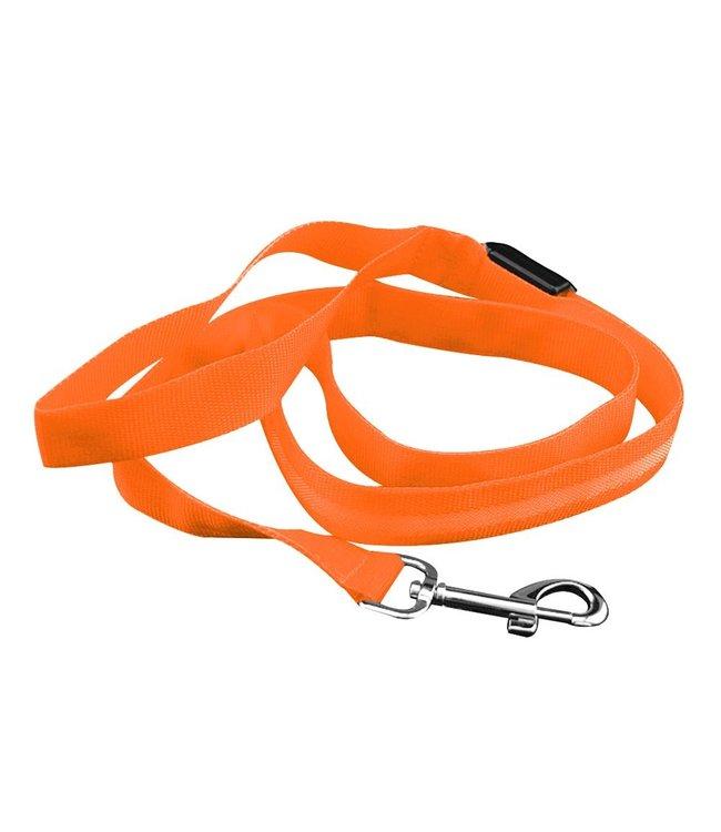 LED Hondenriem - Oranje