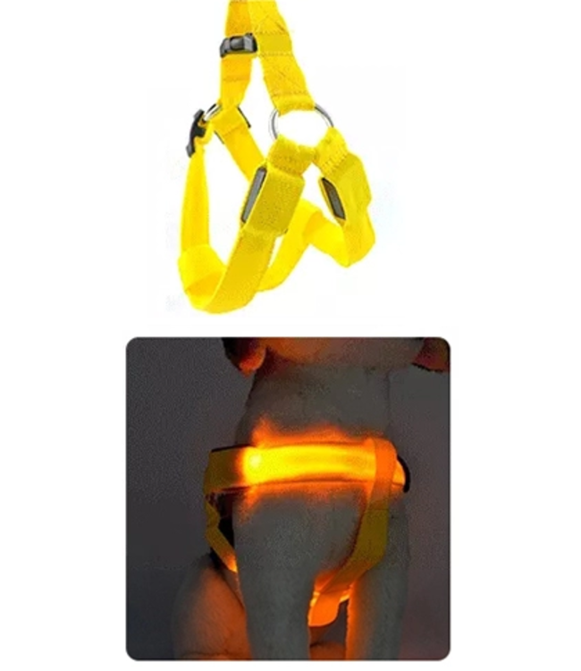 LED Hondentuigje - Geel