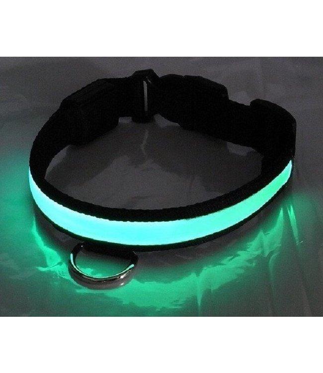 LED Hondenhalsband - Groen