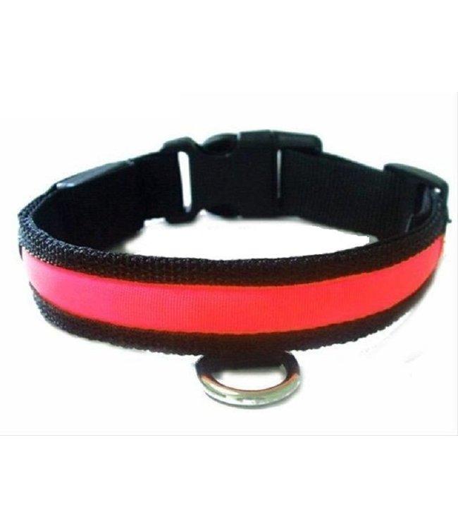 LED Hondenhalsband - Rood