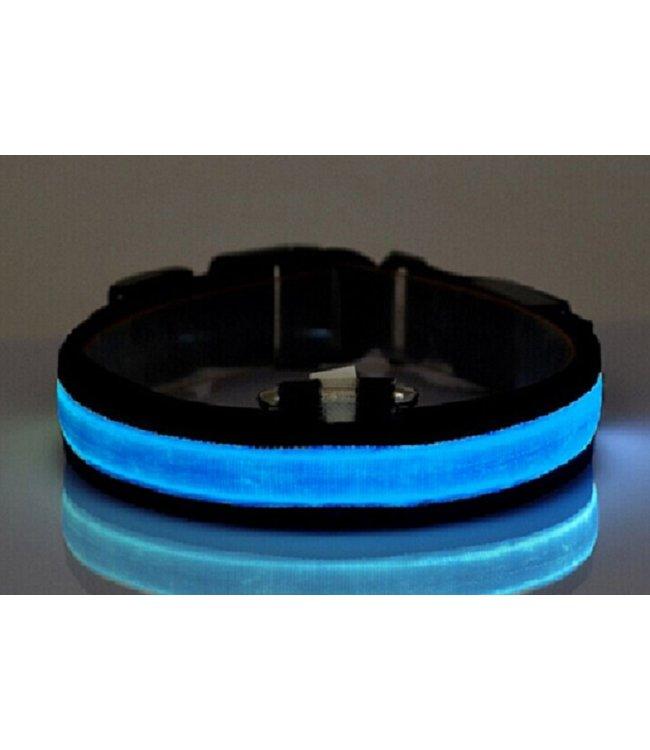 LED Hondenhalsband - Blauw
