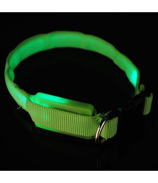LED Hondenhalsband - Mini - Groen