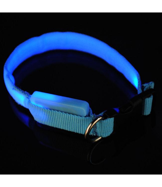 LED Hondenhalsband - Mini - Blauw