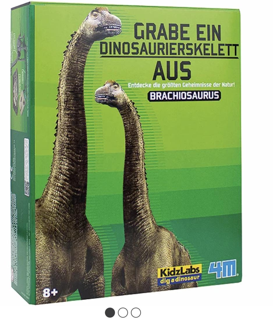 Dinosaurier Ausgrabung Brachiosaurus