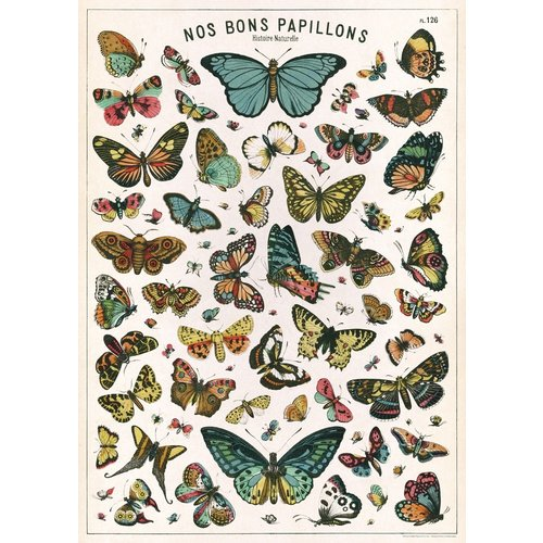 Poster «Butterfly Chart»