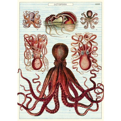 Poster «Octopods»