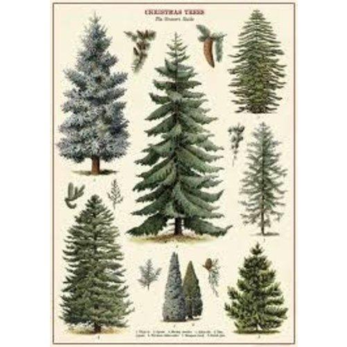 Poster «Christmas Tree»