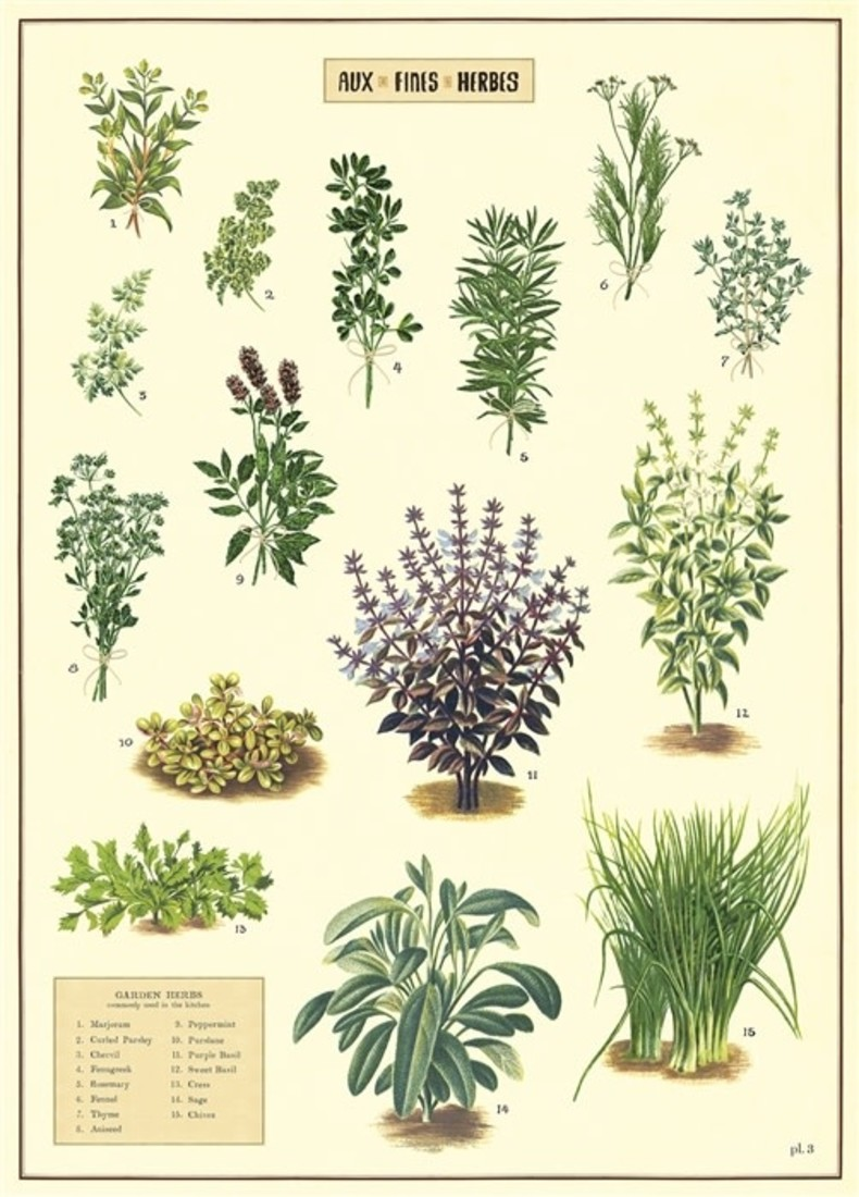 Poster «Aux Fines Herbes»