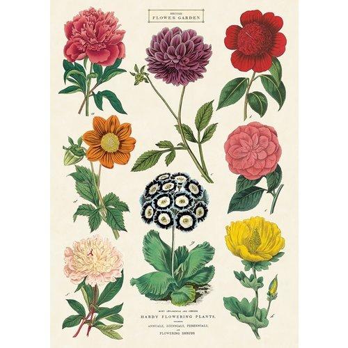 Poster «Botanica 2»