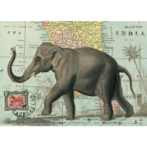 Poster «Elephant»