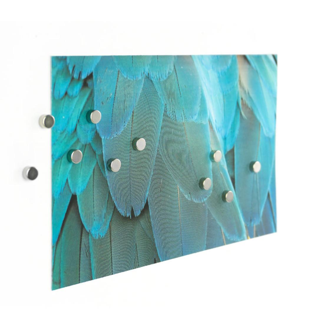 Trendform Magnet Set STEELY Silber