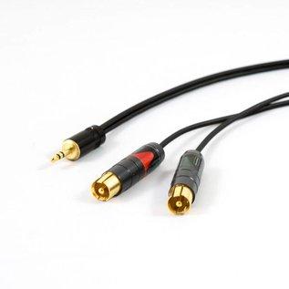 Mini-jack - 2x luxe RCA