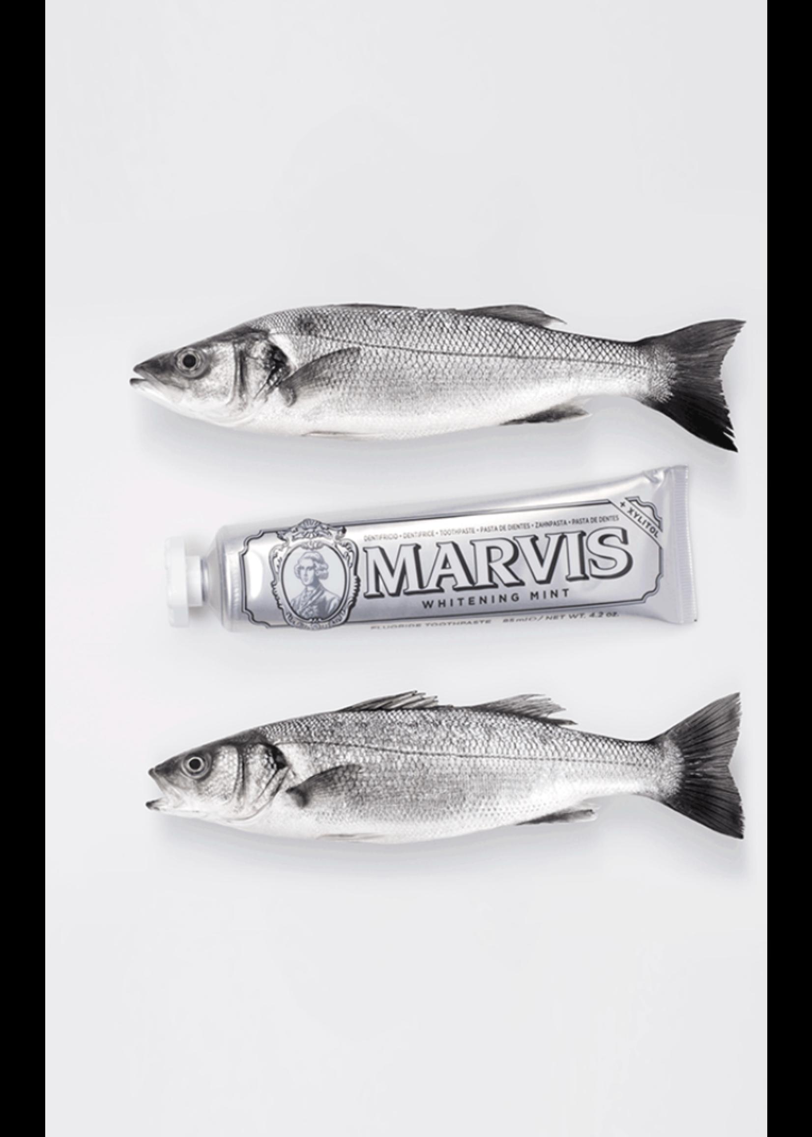 MARVIS TOOTHPASTE (DIFFERENT TASTES)