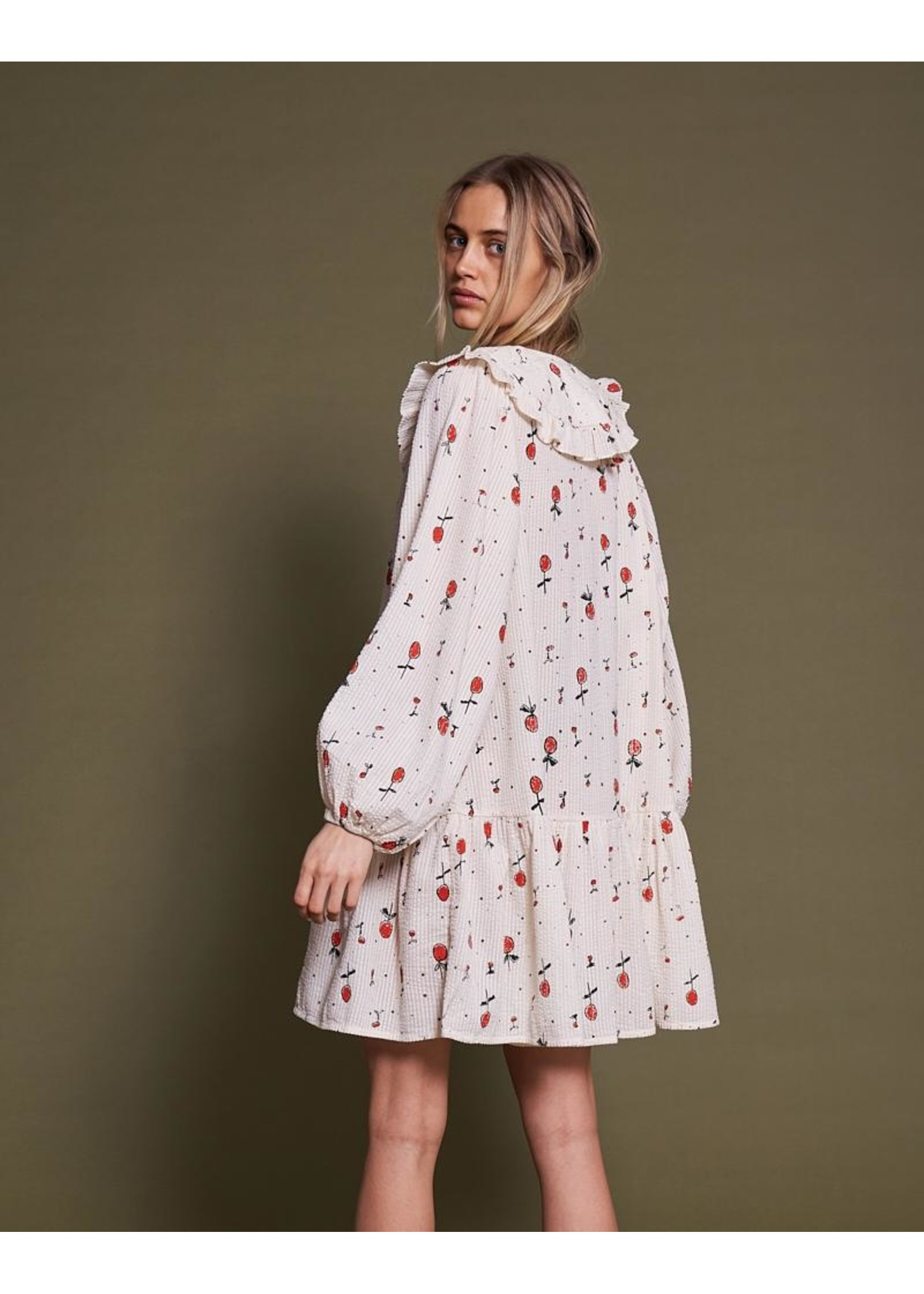 COLLAR CHERRY DRESS