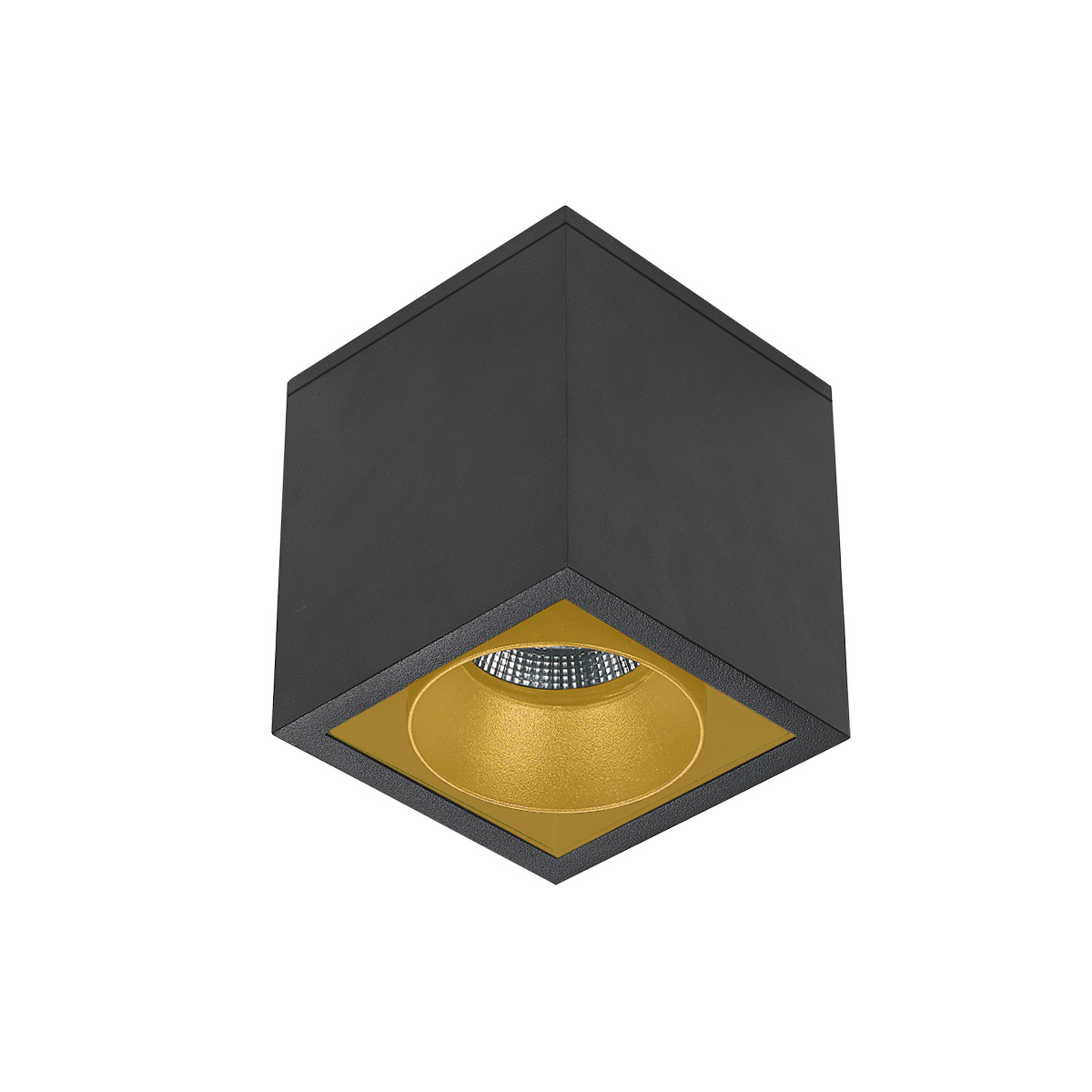 Cube R-1