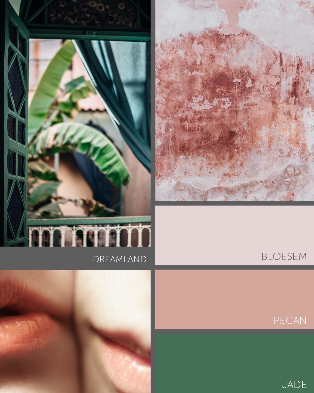 Kleurstalenset Dreamland-2