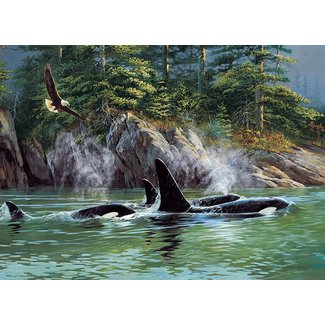 Cobble Hill Puzzels, Legpuzzels - orka's, 1000 stukjes (Orcas)