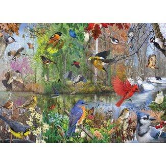 Cobble Hill Puzzle 1000 pieces - Birds of the Season