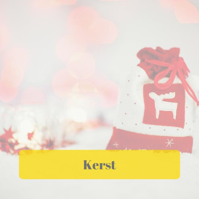 Zakelijke diensten kerst