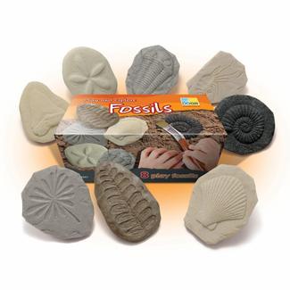 Yellow Door Sensomotorische speelstenen - fossielen, set van 8