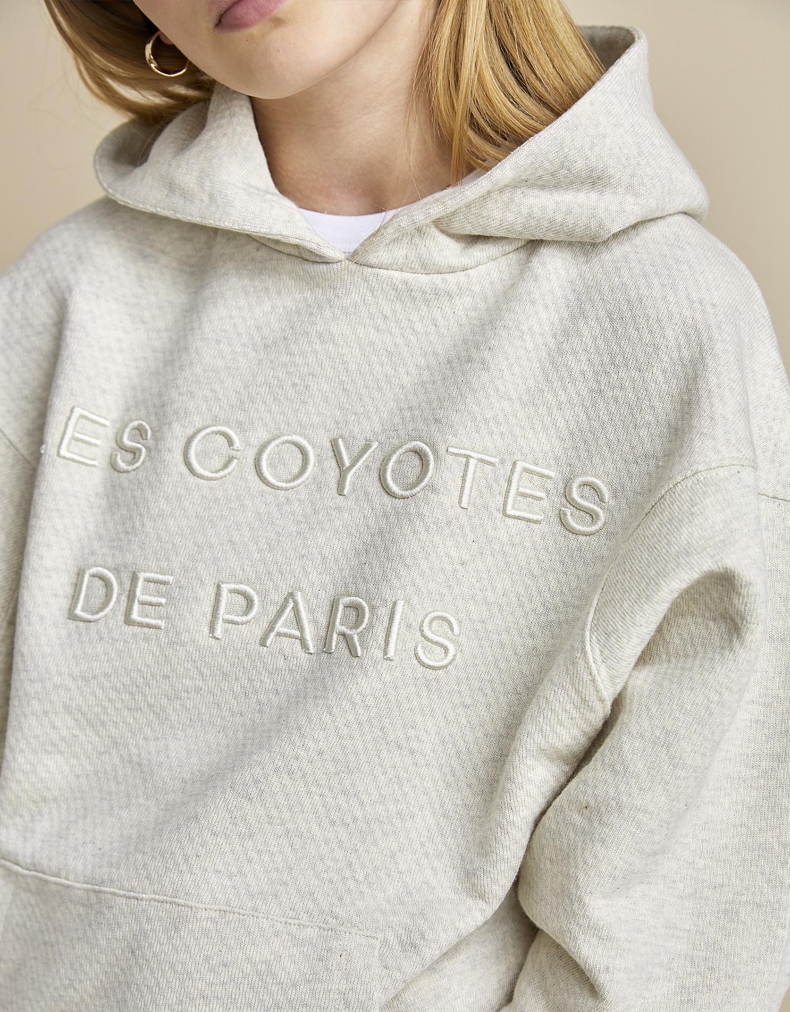 LES COYOTES DE PARIS LES COYOTES DE PARIS  Sweater Boaz cream melange