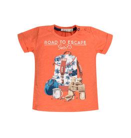 EMC EMC T-shirt BX1813