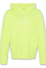 AMERICAN OUTFITTERS Ao76 Hoodie Sweater Fluo
