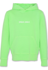AMERICAN OUTFITTERS Ao76 Hoodie Sweater Fluo green