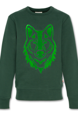 AMERICAN OUTFITTERS AO76 c-neck sweater wolf green