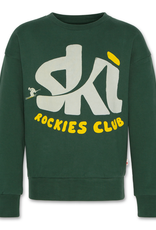 AMERICAN OUTFITTERS AO76 oversized sweater ski green
