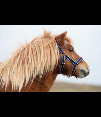 HorseWare Amigo Petite Headcollar Navy/Silver