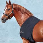 HorseWare Rambo Slinky Shoulder