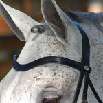 Dy on Flat Leather V-Shaped Browband - New English