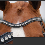 Dy on Frontal dressage white