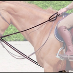 Dy on Leather Draw reins