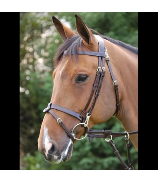 Dy on Flat Flash noseband with snaps